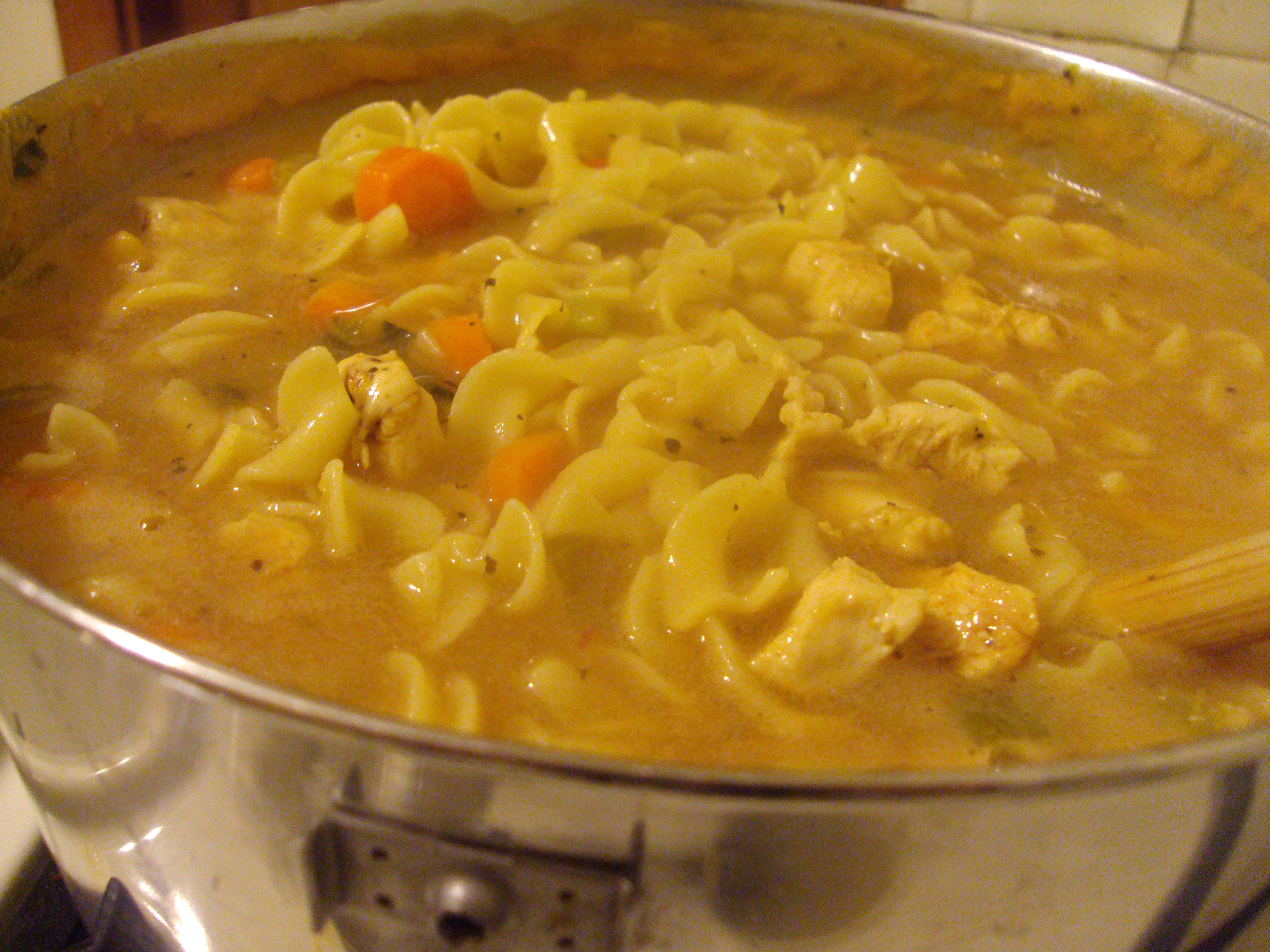 Salsa Chicken Noodle Soup