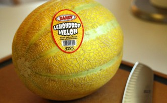 lemondrop melon!