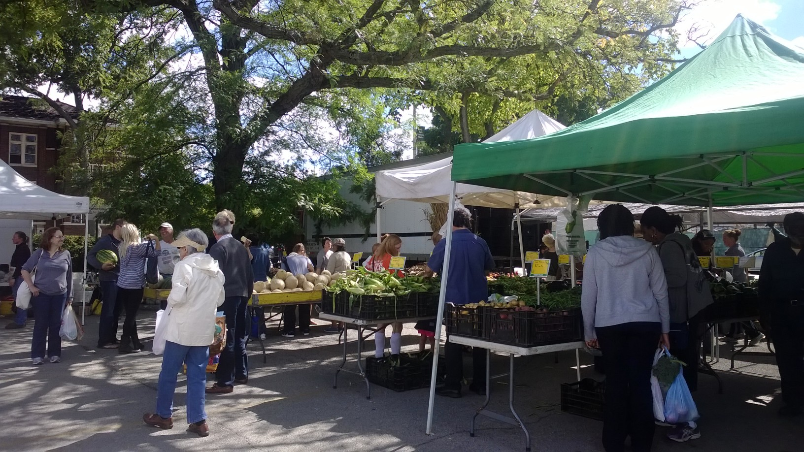 A view of the farmers market